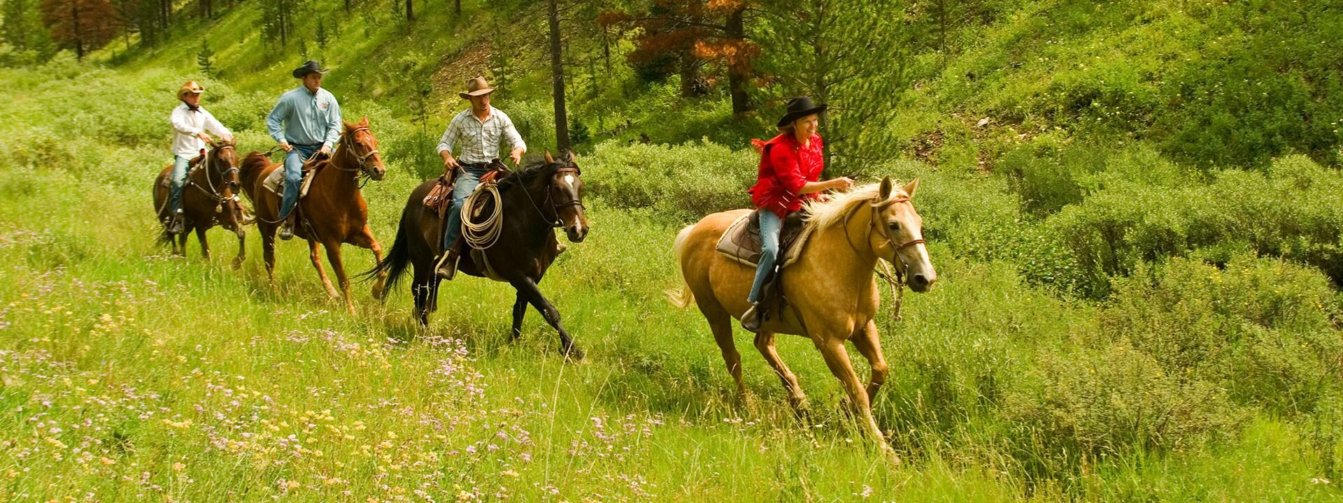 Best Horseback Riding Trails Mountain Adventures Grand County Colorado